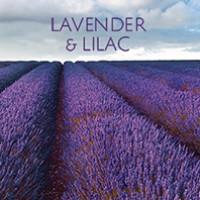 Lavender & Liliac